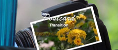 postcard-transition