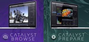 Catalyst-Sony