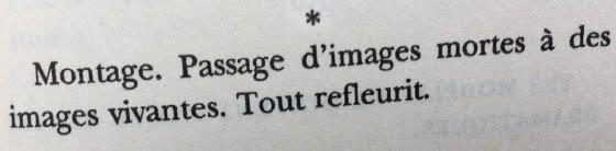 [Robert Bresson]