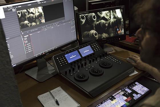 Nos formations DaVinci Resolve sont organisées dans une salle dédiée : lumière du jour, projection 4K, monitoring HDR, surfaces de contrôle et claviers dédiés, sondes et stockage partagé...